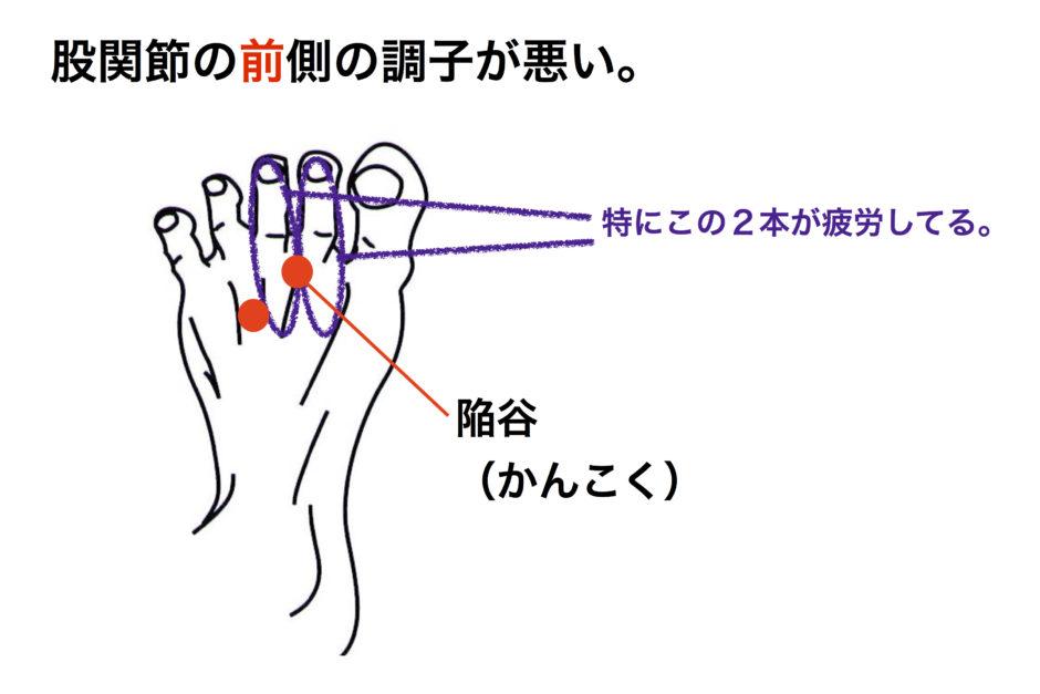 股関節 前側 足