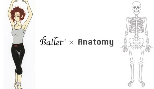 解剖学の視点からみた、バレエで重心が後ろにズレる11の理由