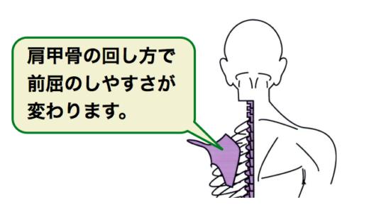 前屈のしやすさでわかる。肩甲骨・股関節のクセチェック