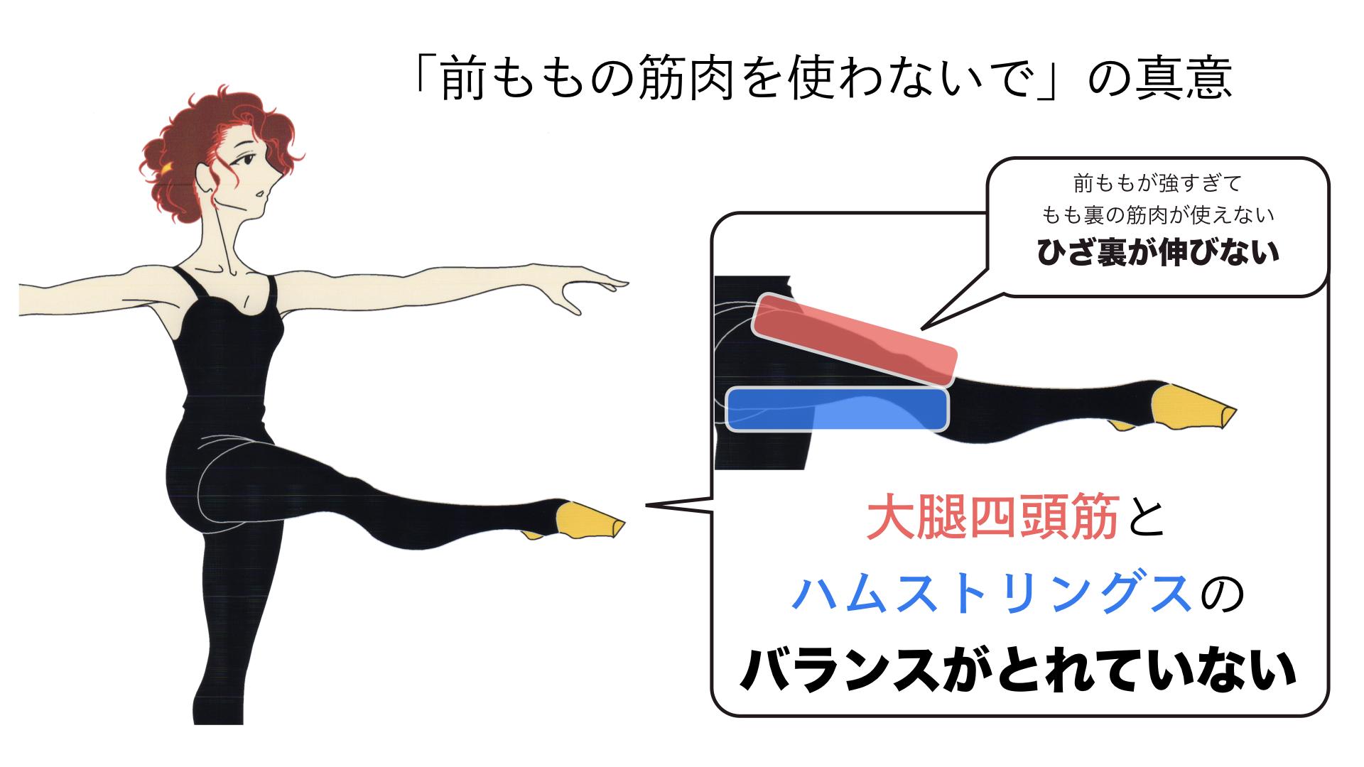 バレエで前もも使わないの意味(2)大腿四頭筋とハムストリングスのバランス