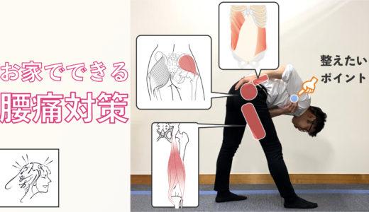 【お家でできる腰痛対策】肩こりで腰とお尻が痛い人向け筋膜リリース・ストレッチ