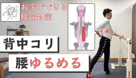 【背中こり、腰をゆるめる】筋膜リリースストレッチ|お家でできる腰痛対策