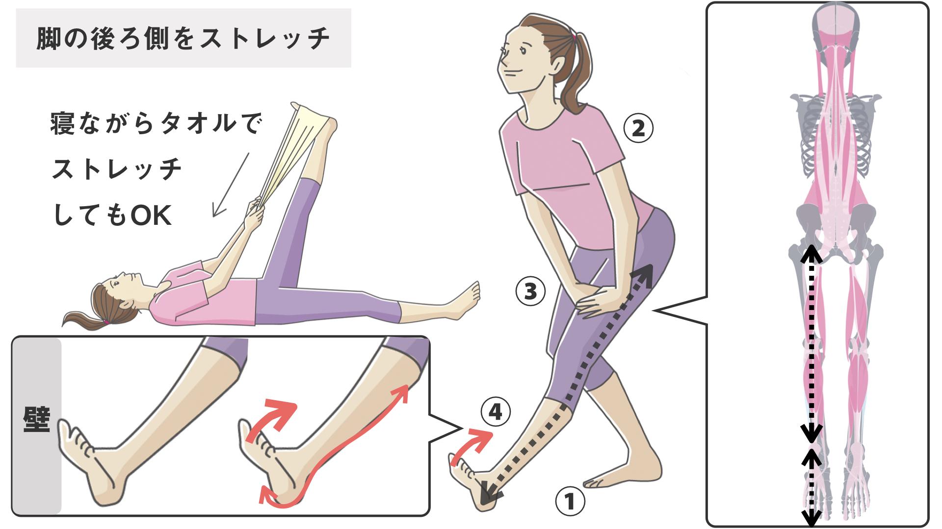 内側 が の つる 太もも 足がつるのはなぜ?予防とつった時の対策方法を理学療法士が伝授
