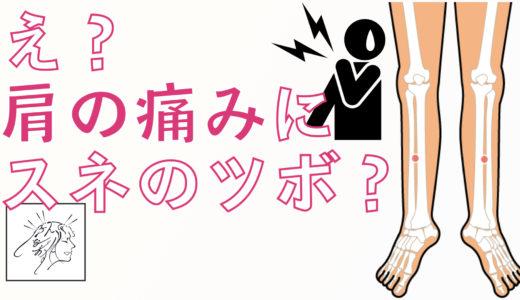 肩の痛みのセルフケアに使うスネのツボ|五十肩の鍼治療穴|体が思い通りに動くバレエ整体(かんき出版)の補足
